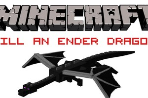 Kill the Ender Dragon