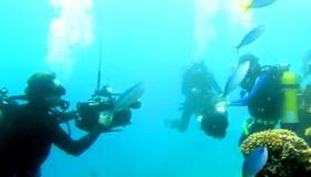 Google Streetview Underwater