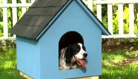 Build a Doghouse