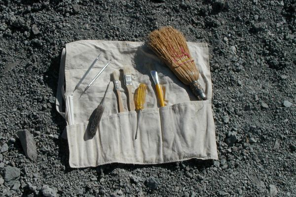 Assemble a Fossil Hunting Kit - DIY
