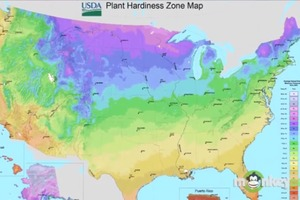 Understanding Your Hardiness Zone