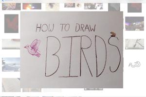 How-to draw birds