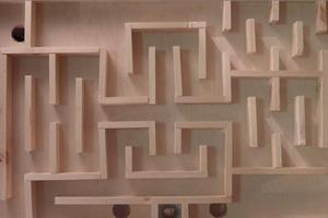 Mouse Maze Trials
