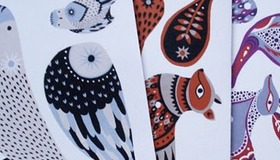 Karolin Schnoor Illustrated Cards