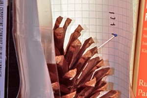 Pinecone Hygrometer