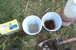 DIY Soil Test: Measure pH